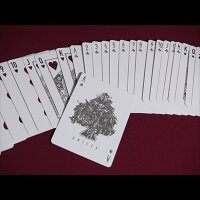 Anicca Deck (Silver) by Card Experiment