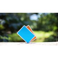 Summer NOC Playing Cards (Blue)