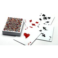 Bicycle Disruption Deck (Limited Edition) by Collectable Playing Cards
