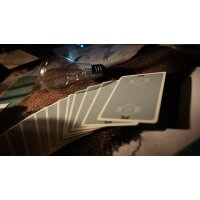 Fox Targets Playing Cards