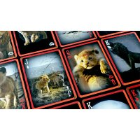 Lion King Deck Playing Cards