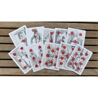 Cottas Almanac #3 Transformation Playing Cards